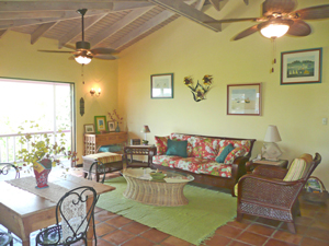 St John vacation rental Meridian has stonework,  tropical decor and high ceilings